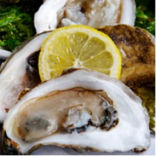 Fresh Louisiana Oysters (shucked) Quart
