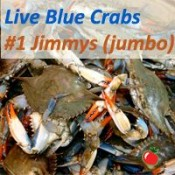 Live Crabs (JIMMY)