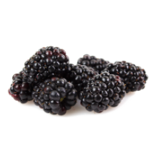 Ole Homestead - Blackberry Pepper Jelly