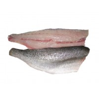 Speckled Trout Filets from the Gulf of Mexico