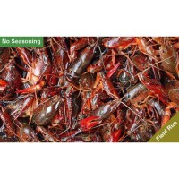 Live Crawfish Field Run Sack - No Seasoning